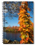 Growing Colors Spiral Notebook
