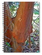 Growing Through The Fence Spiral Notebook