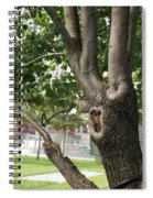 Growth On The Survivor Tree Spiral Notebook
