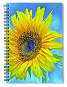 Growth Renewal And Transformation Spiral Notebook
