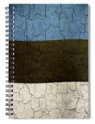 Grunge Estonia Flag Spiral Notebook