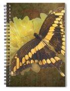 Grunge Giant Swallowtail-1 Spiral Notebook