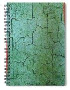 Grunge Mongolia Flag Spiral Notebook