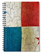Grunge Panama Flag Spiral Notebook