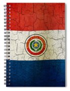 Grunge Paraguay Flag Spiral Notebook