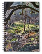Guadalupe State Park Spiral Notebook