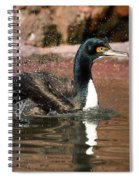 Guanay Cormorant Spiral Notebook
