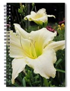 Guardian Angel Daylilies Spiral Notebook