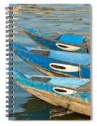 Guardian Eyes Spiral Notebook