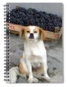 Guardian Of The Grapes Spiral Notebook