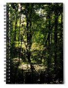 Guardians Of The Forest Spiral Notebook