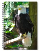 Guarding Liberty Spiral Notebook