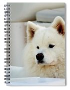 Guarding The Boat Spiral Notebook