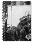Guerin Sultan And Harem Spiral Notebook