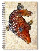 Guinea Fowl Puffer Fish Spiral Notebook