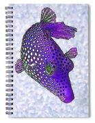 Guinea Fowl Puffer Fish In Purple Spiral Notebook