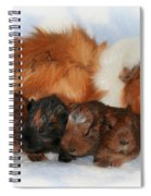 Guinea Pig Family Spiral Notebook