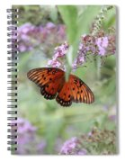 Gulf Fritillary Agraulis Vanillae-featured In Nature Photography-wildlife-newbies-comf Art Groups  Spiral Notebook