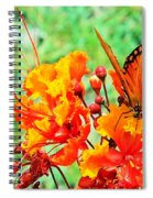 Gulf Fritillary Butterfly On Pride Of Barbados Spiral Notebook