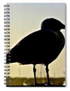 Gull At Sunset Spiral Notebook