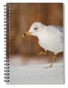Gull Dance Spiral Notebook