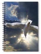 Gull Flying Under A Radiant Sunburst Spiral Notebook