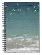 Gulls Flying Over The Ocean Spiral Notebook