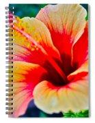 Gumamela1 Spiral Notebook