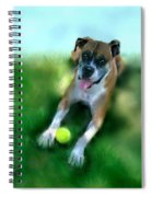 Gus The Rescue Dog Spiral Notebook