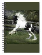Gypsy Morning Mist Spiral Notebook