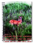 Habakkuk 3 19 Spiral Notebook