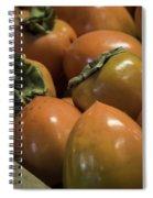 Hachiya Persimmons Spiral Notebook