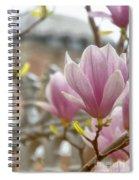 Hagia Sophia Magnolia Spiral Notebook