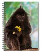 Hairy Monkey Spiral Notebook