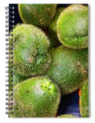Hairy Peary Chayote Squash By Diana Sainz Spiral Notebook