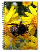 Hairy Visitor Spiral Notebook