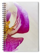 Half An Orchid Spiral Notebook