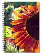 Half Of A Sunflower Spiral Notebook