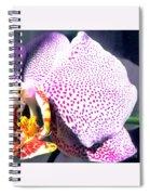 Half Orchid Spiral Notebook
