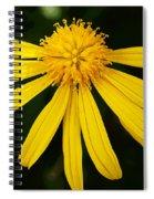 Half Yellow Spiral Notebook