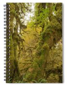 Hall Of Mosses 3 Spiral Notebook