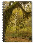 Hall Of Mosses 5 Spiral Notebook