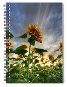 Halleluia Spiral Notebook