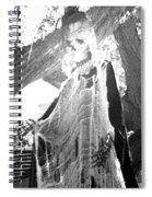 Halloween 2 Spiral Notebook