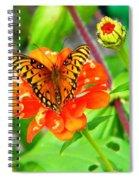 Halloween Orange Spiral Notebook