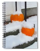 Halloween Snow Spiral Notebook