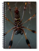 Halloween Spider Spiral Notebook