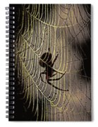 Halloween - Spider Spiral Notebook