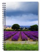 Hampshire Lavender Field Spiral Notebook