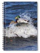Hang 10 Spiral Notebook